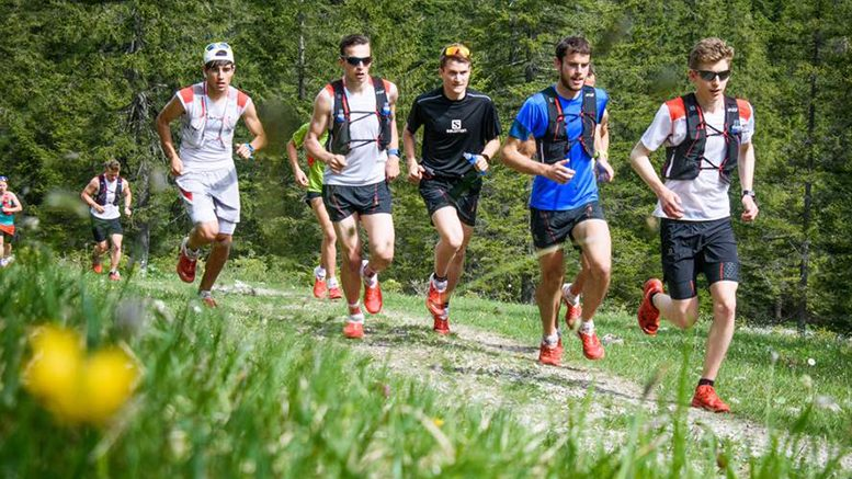 Salomon Running Academy 6